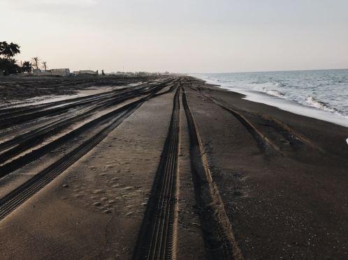 Oman's Beach